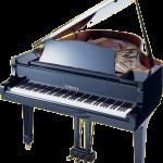 İstanbul Piyano Eşya Taşıma, PAketleme, Nakliyat, Depolama Hizmeti